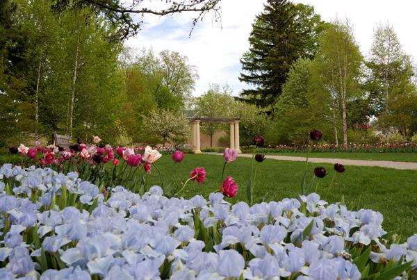 About Paine Art Center And Gardens